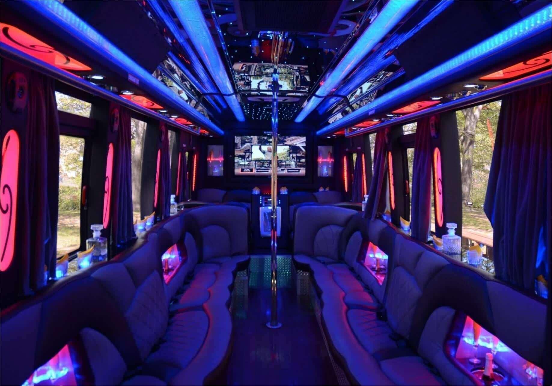 Party Bus - 15 Passengers Image